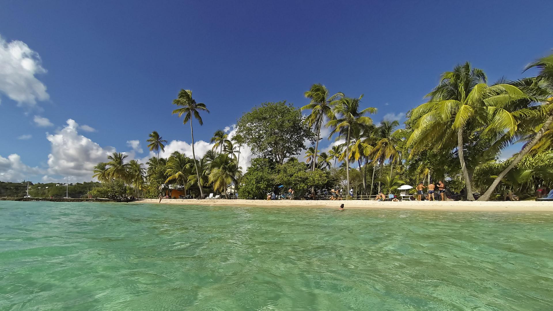 Guadeloupe 2015 © Dietmar Seinsche